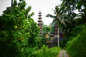 Keep on walking – Ubud Reisebericht